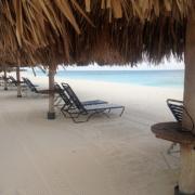 Liegen unter Sonnenschirmen am Strand im 4-Sterne Hotel Amsterdam Manor Beach Resort auf Aruba.