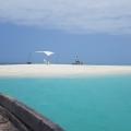 Sandbank mit Sonnensegel, ein Ausflug mit Boot bei Buchung im 4-Sterne Hotel Chuini Zanzibar Beach Lodge.