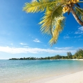 Weisser Sandstrand und Kokospalme Strand vom 3-Sterne Hotel Merville Beach in Mauritius.