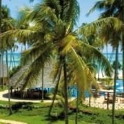 Blick in den Garten des 4-Sterne Ocean Paradise Resorts.