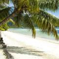 Weisser langer Sandstrand mit Palmen im 3-Sterne Plus Hotel Indian Ocean Lodge auf der Insel Praslin, Seychellen.