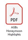 PDF Symbol für AGB der Honeymoon Highlights - Heiraten weltweit
