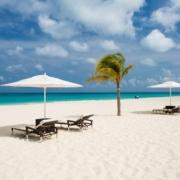 Sonnenliegen mit Sonnenschirmen am Strand des 4-Sterne Plus Hotels Bucuti & Tara Beach Resort.