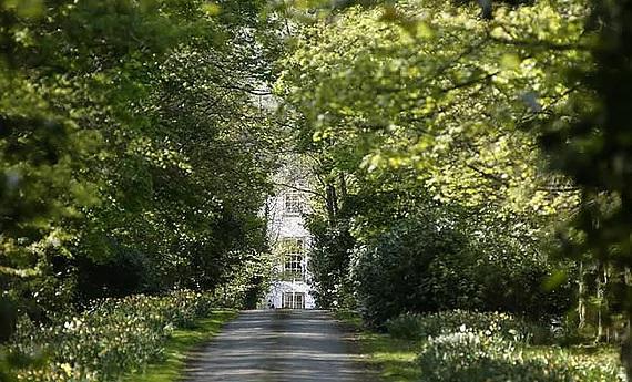 Auffahrt durch den Garten im 4-Sterne Hotel Letham House in Schottland.