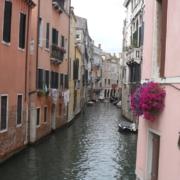 Kanal mit rosafarbenen Haeusern und lila Blumen in Venedig